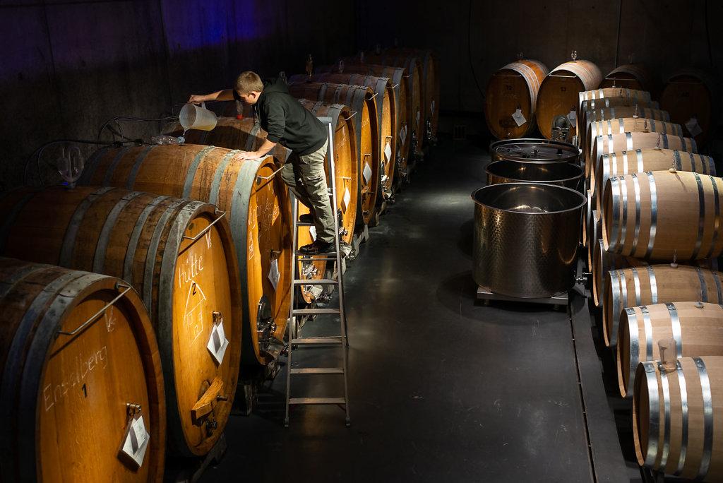 Winery Franz Keller